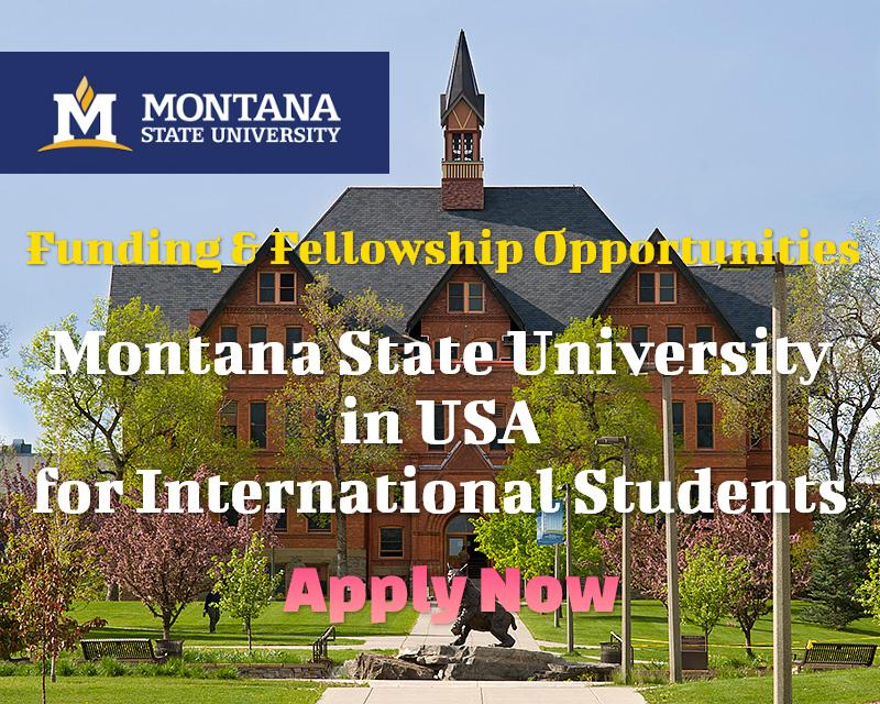 Funding & Fellowship Opportunities