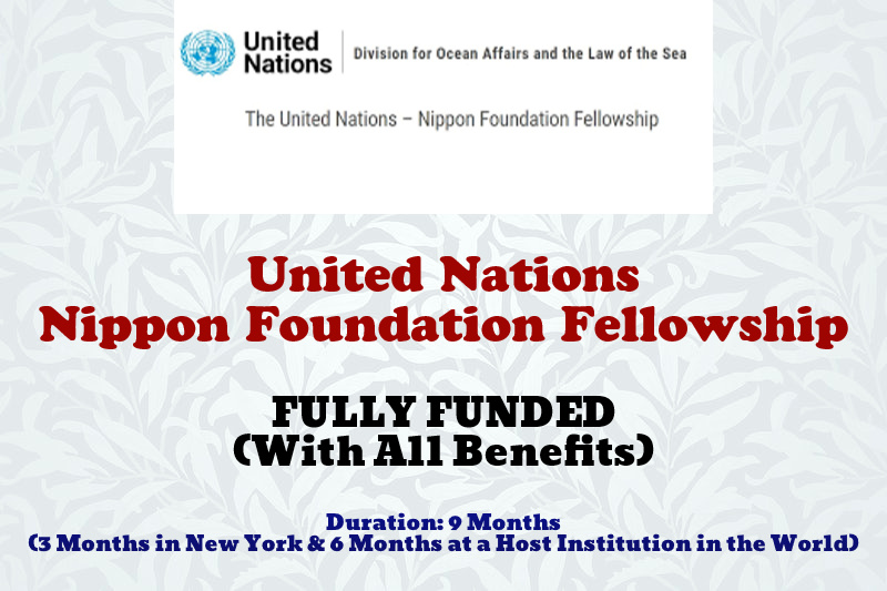United Nations Nippon Foundation Fellowship